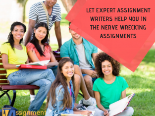 Business, Management, Economics, Marketing assignments and essay writing services.
