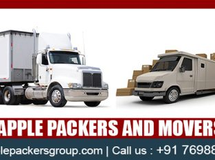 Apple Packers and Movers in Surat