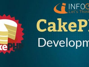 Highly customized CakePHP Development Service Provider