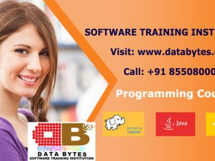 Best Software Training Institutes in Bangalore