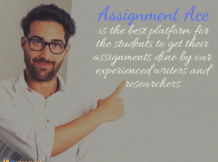 Professional Assignment Help – Case Study – Affordable Writing Services – Presentation Assistance