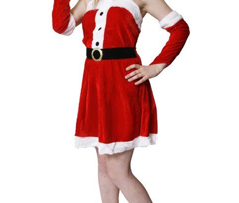 Adult Sexy Santa
