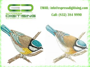 Embroidery Digitizer | Embroidery Digitizing Services