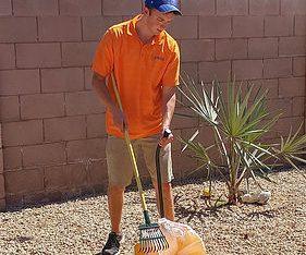 Dog Poop Yard Cleanup Peoria
