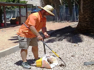 Dog Poop Cleaning Services AZ