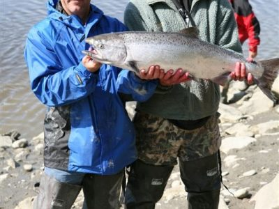 Catch Alaskan King Salmon -Alaska Halibut Fishing Charter