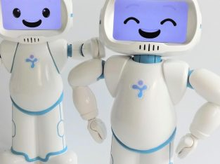 Make Social Robots Your Companion at Senior Age