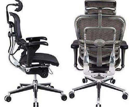 Ergohuman High Back Swivel Chair with Headrest, Black Mesh