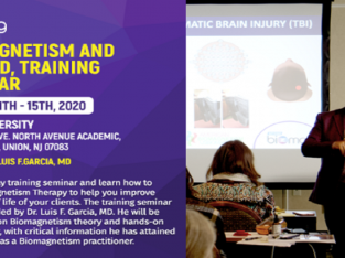 Biomagnetism and Beyond, Training Seminar March 11th-15th, 2020