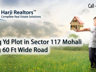 Commercial Property Mohali