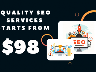 Our Quality SEO Services Starts From $98. Hit us up, & let us optimize your website.