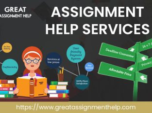 Hire our academic writer for urgent assignment help