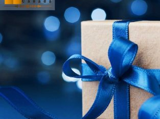 best birthday gift delivery to Canada for girlfriend online