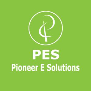 E-Governance Services   Digital India   Pioneer E Solutions
