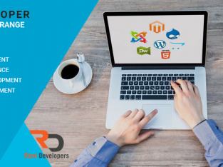 RizviDeveloper is a professional website design and development Freelance company in Delhi, India