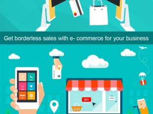 Why is the importance of E-commerce Development service?