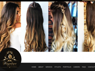 Professional Hair Extension North Carolina