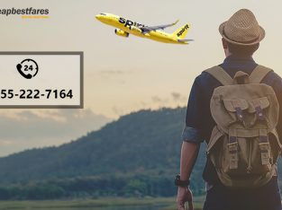 Spirit Airlines Reservation | Ticket Booking Services
