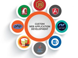 Best Website Development Company in Delhi, India