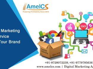 Best SEO Services in Chandigarh