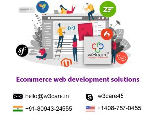 Custom Ecommerce Website Redesign and Development Services