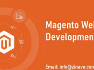 Magento Website Design And Development Services