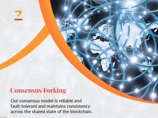 Ethereum & Consensus fork | Custom Cryptocurrency Creation