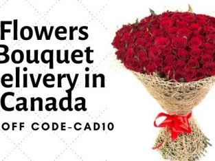Same day flowers delivery in Ottawa Canada