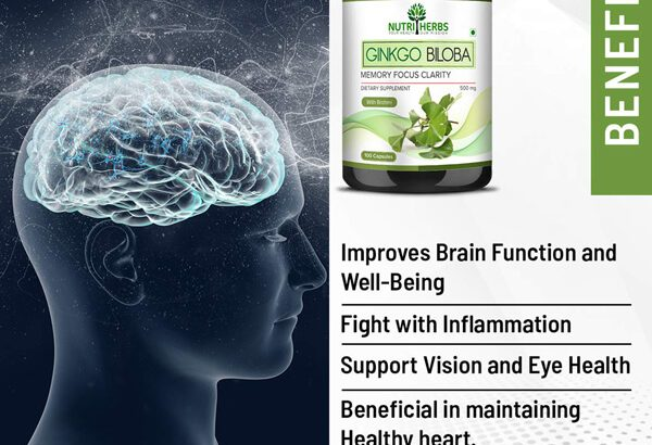 Best Ginkgo Biloba to Improve Brain Function and Learning Ability