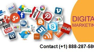 Best SEO Services Provider in USA