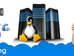 Things to consider while finding the best Linux hosting plan