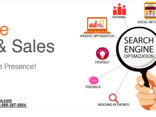 Best SEO Company in USA | The Integrity Webs