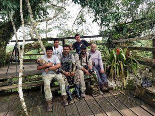 brazil bird photo tours