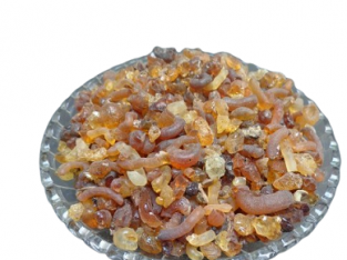 Buy Online Babul Gond from IndianJadiBooti