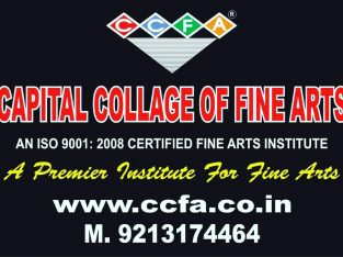 Best Art College In Delhi