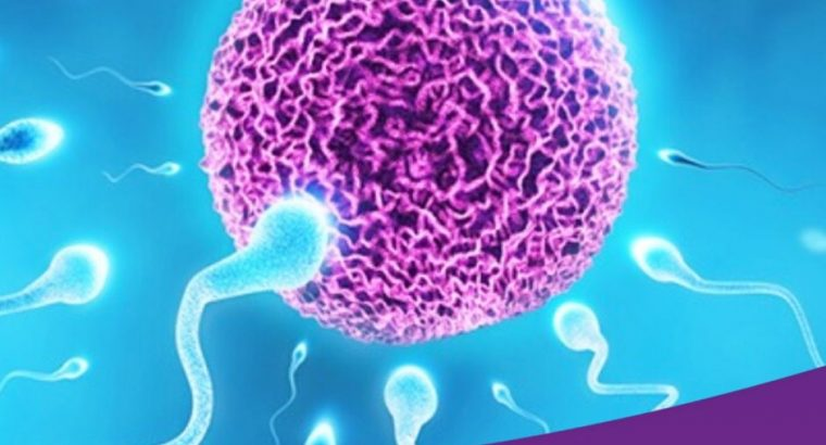 IVF Specialists In Navi Mumbai   Dr. Uday Thanawala   Infertility Care Specialist