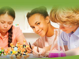 Online English Tuition Edgeware classes