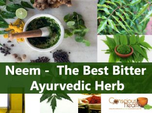Neem – The Best Bitter Ayurvedic Herb
