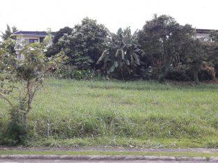 Ayala Greenfield Estates (Lot 563 sqm PHP 8.5M only)