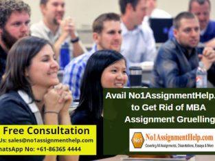 Avail No1AssignmentHelp.com to Get Rid of MBA Assignment Gruelling