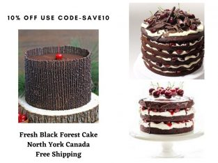 Fresh Black Forest Cake North York Canada with Free Shipping