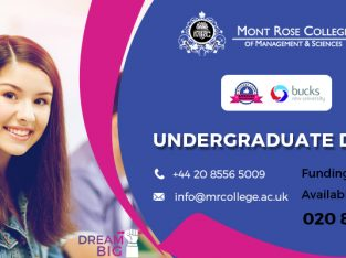 Undergraduate Degree at MRC