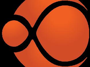 Enterprise Software   Web and Mobile App Development Company India USA