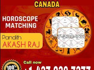 AKASH RAJ- Astrologer in Toronto, Brampton, Scarborough, Vaughan