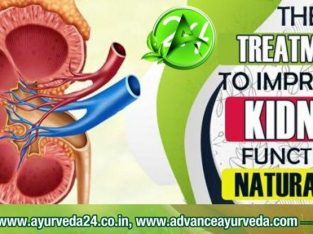 Ayurvedic Medicine for Kidney Failure