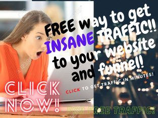 FREE BOOK REVEALS HOW TO GET INSANE TRAFFIC TO YOUR WEBSITE!!!