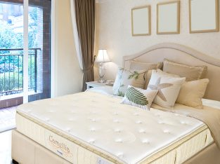 Buy 6 Golden Knight Mattress In Singapore
