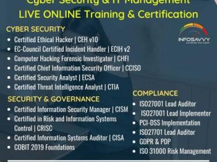 CEH Training New Mumbai | Ethical Hacking Course Online | info-savvy.com