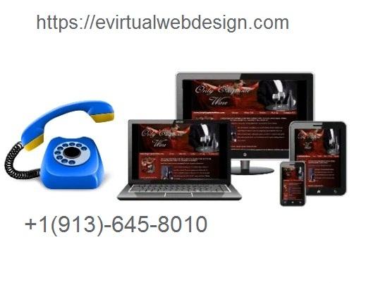 Evirtual Web Design Service Agency