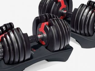 SISPANDA 24kg 40kg adjustable dumbbells set with stand in stock favorable price offered in London